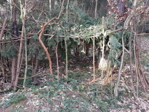 Waldspiele 4
