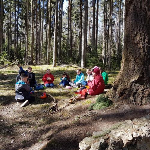 Waldspiele Frühjahr 2018